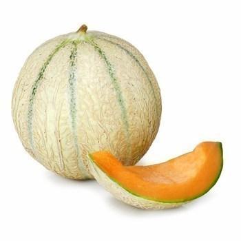 Melon - Fruits et légumes - Promocash Dax