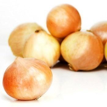 Oignons gros 25 kg - Fruits et légumes - Promocash Douai