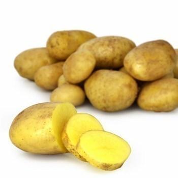 Pommes de terre four EQR - Fruits et légumes - Promocash Bourgoin