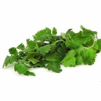 Coriandre EQR - Fruits et légumes - Promocash Brive