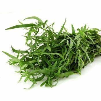 Estragon EQR 100 g - Fruits et légumes - Promocash Bourgoin