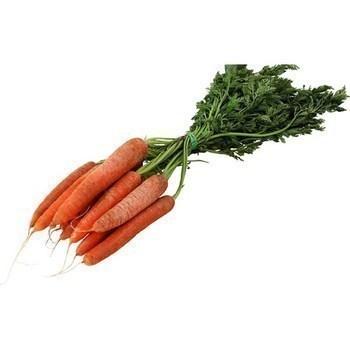 Carottes fane - origine France - catégorie 1 - Fruits et légumes - Promocash Brive